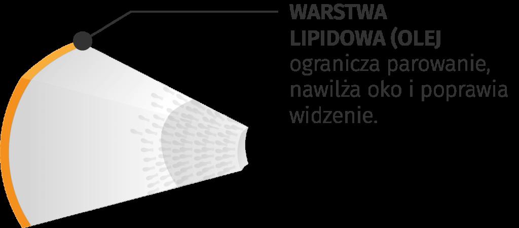 interferometria-warstwowa-meibografia-mruganie